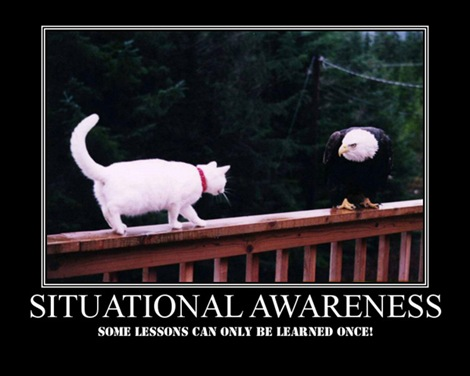 Situational_Awareness